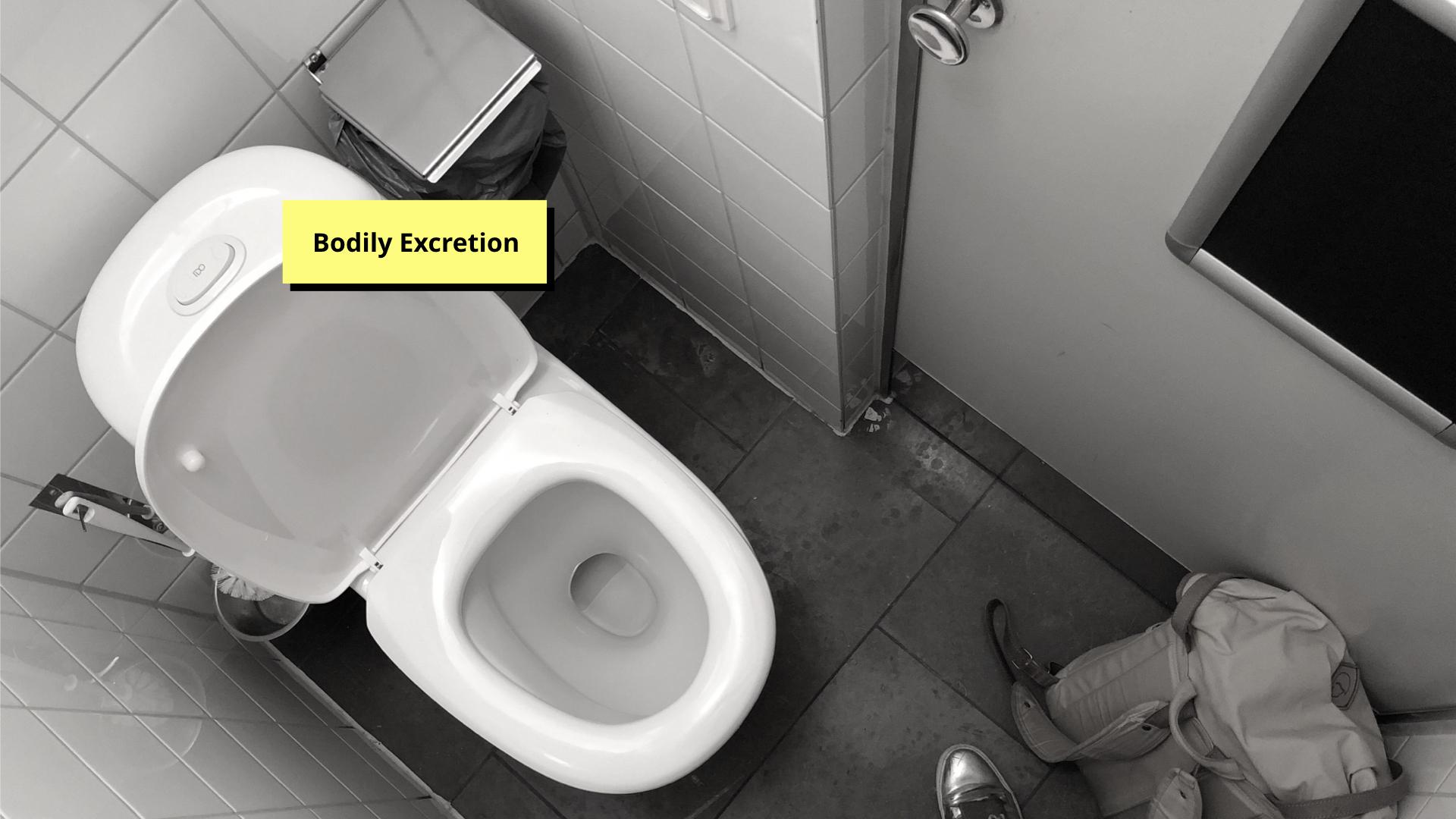 DIS 2019 paper presentation - bodily excretion